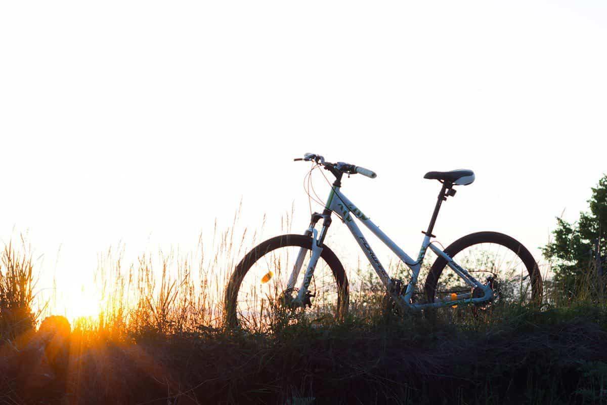 Tampa Bay bike routes